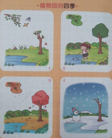 二年级的植物或动物看图写画.