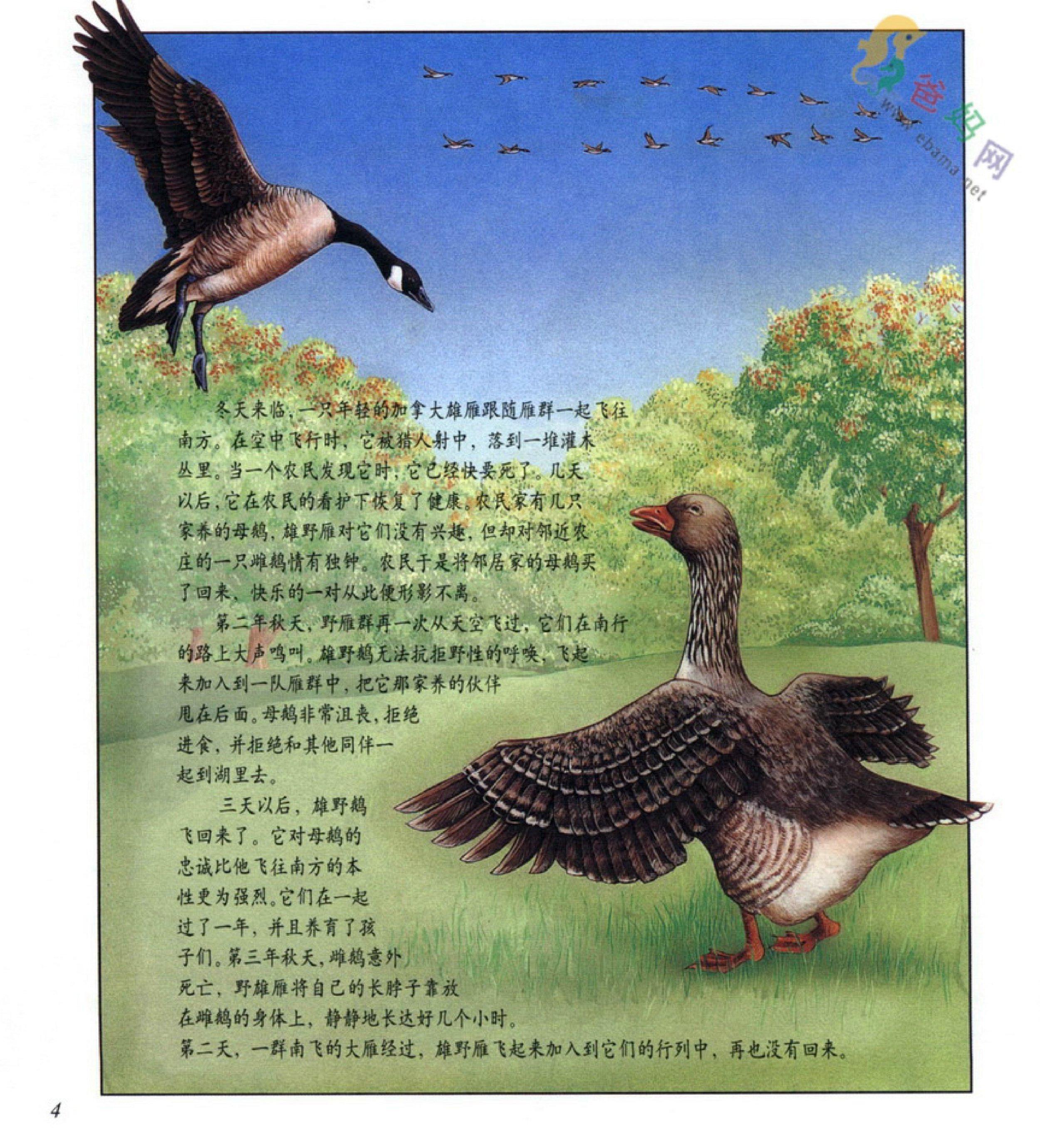 百科类——生命真奇妙—动物也有感情吗 - 儿童图书