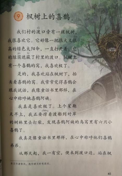 三字经体高考作文_课文 第九课 枫树上的喜鹊