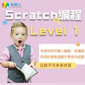 Scratch Level 1