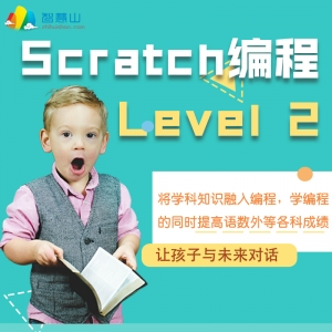 Scratch 编程系统课 L2 (上+下),全程1对1答疑